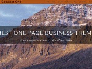 CyberChimps Compact One Pro WordPress Plugin
