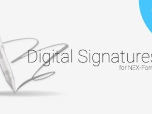 Digital Signatures for NEX-Forms