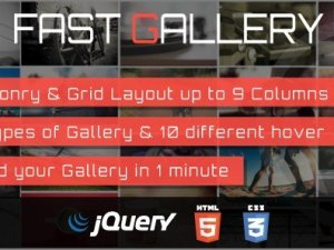 Fast Gallery Premium WordPress Plugin