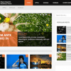WPLocker-MyThemeShop DayNight WordPress Theme