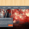 WPLocker-MyThemeShop Woodie WordPress Theme