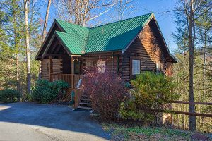 Mountain Top View - an easy to access cabin rental