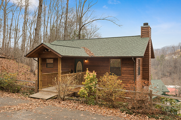 OMG - a smoky mountains cabin rental