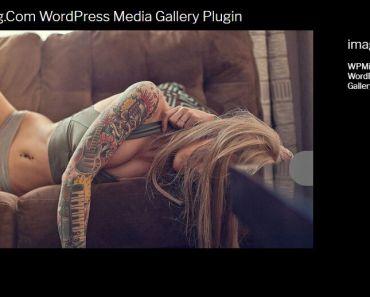 Fullscreen Media Gallery Plugin For Wordpress - WP Media Stories