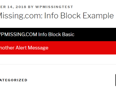 Create Alert Messages In The Post Page - Info Blocks