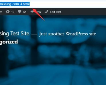 Add Custom File Extensions In Wordpress URL - WP URL Extension