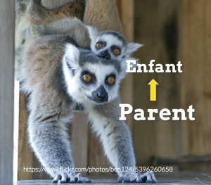 enfant-parent