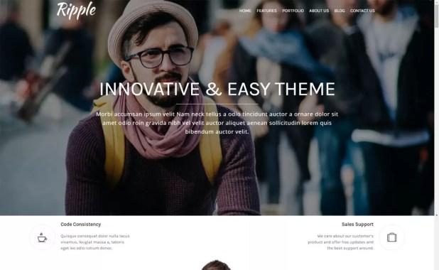 ripple-free portfolio theme