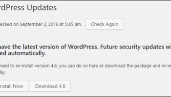 WordPress Updates Notice