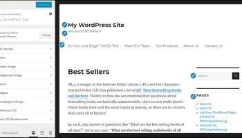 WordPress Theme Customizer screen