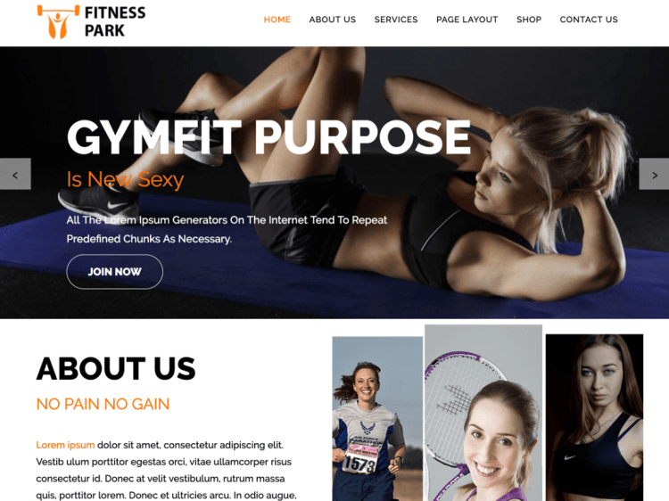 FitnessPark-best-free-WordPress-themes-fitness-gyms-WPreviewteam