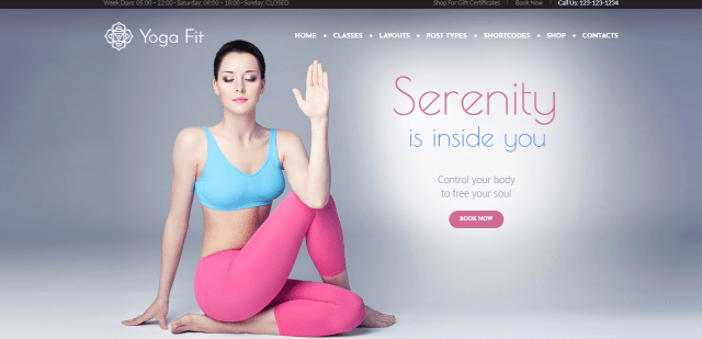yoga premium wordpress theme