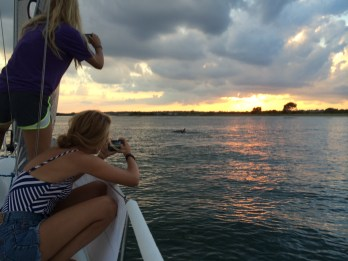 Sunset Sailing Wrightsville Beach Dolphin sighting