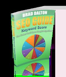 WordPress Seo Guide - Keyword Score