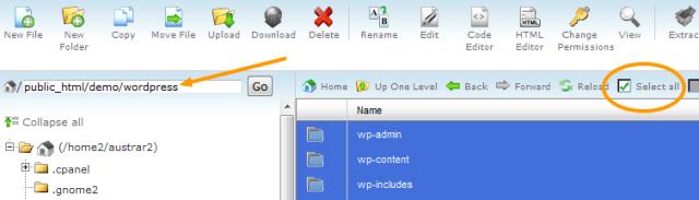 Copy WordPress Files