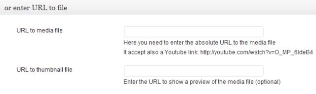 Insert Video Url