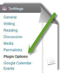 Plugin Options Page WordPress
