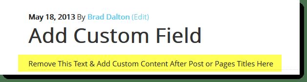 example output custom meta box field