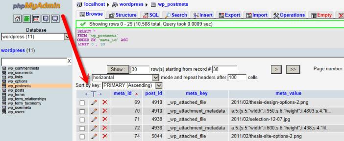 delete wp_postmeta tables