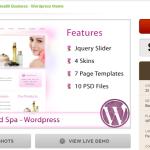 Beauty Salon WP Theme Within The Marketplace