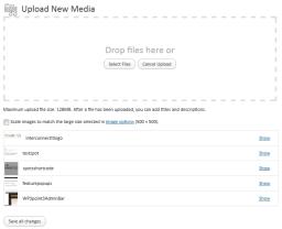 Multiple file Uploader In WordPress 3.3