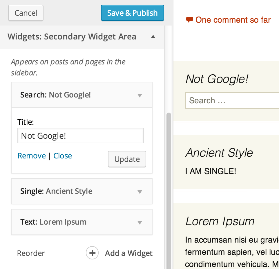 widget-editing