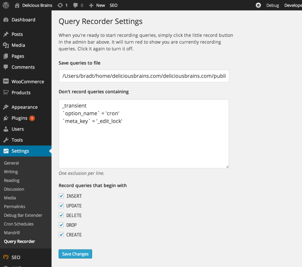 query-recorder-settings