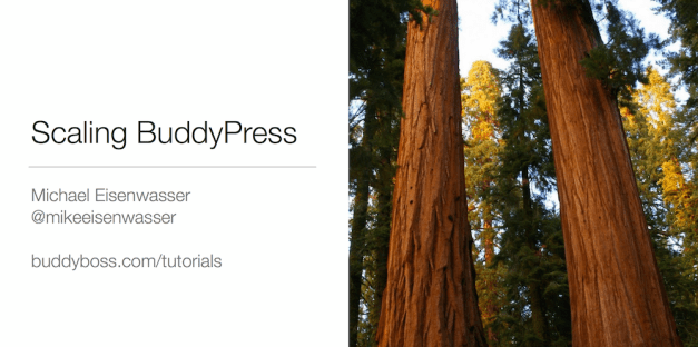scaling-buddypress