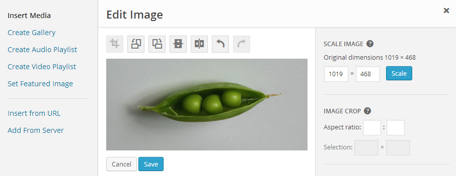 WordPress Feature Plugin Planned to Improve Image Editing Experience