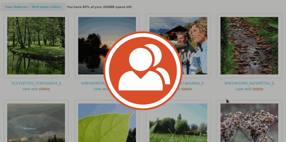 MediaPress Now in Beta: A New Media Gallery Plugin for BuddyPress