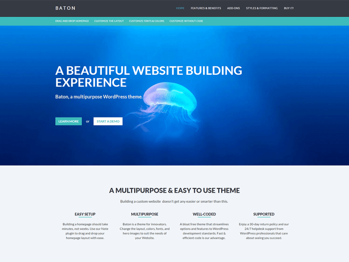 Baton a free wordpress business theme with a homepage layout after installing the theme users are prompted to install the note plugin a text widget that offers live editing in the customizer friedricerecipe Gallery