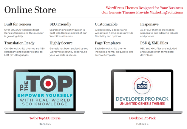 Web Savvy Marketing Theme Store