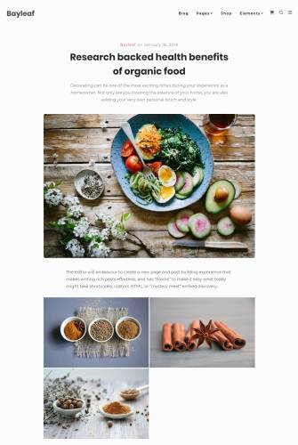 bayleaf-single Bayleaf: A Food and Recipe Blog Theme design tips  Opinion|Themes|review