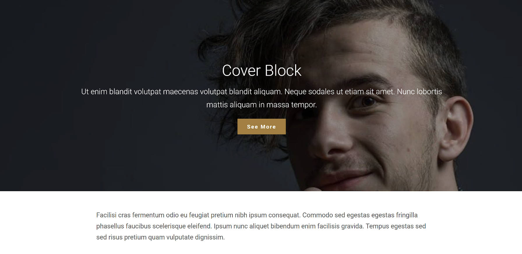 Cubra a saída do bloco no front end com o tema Empt Lite WordPress.