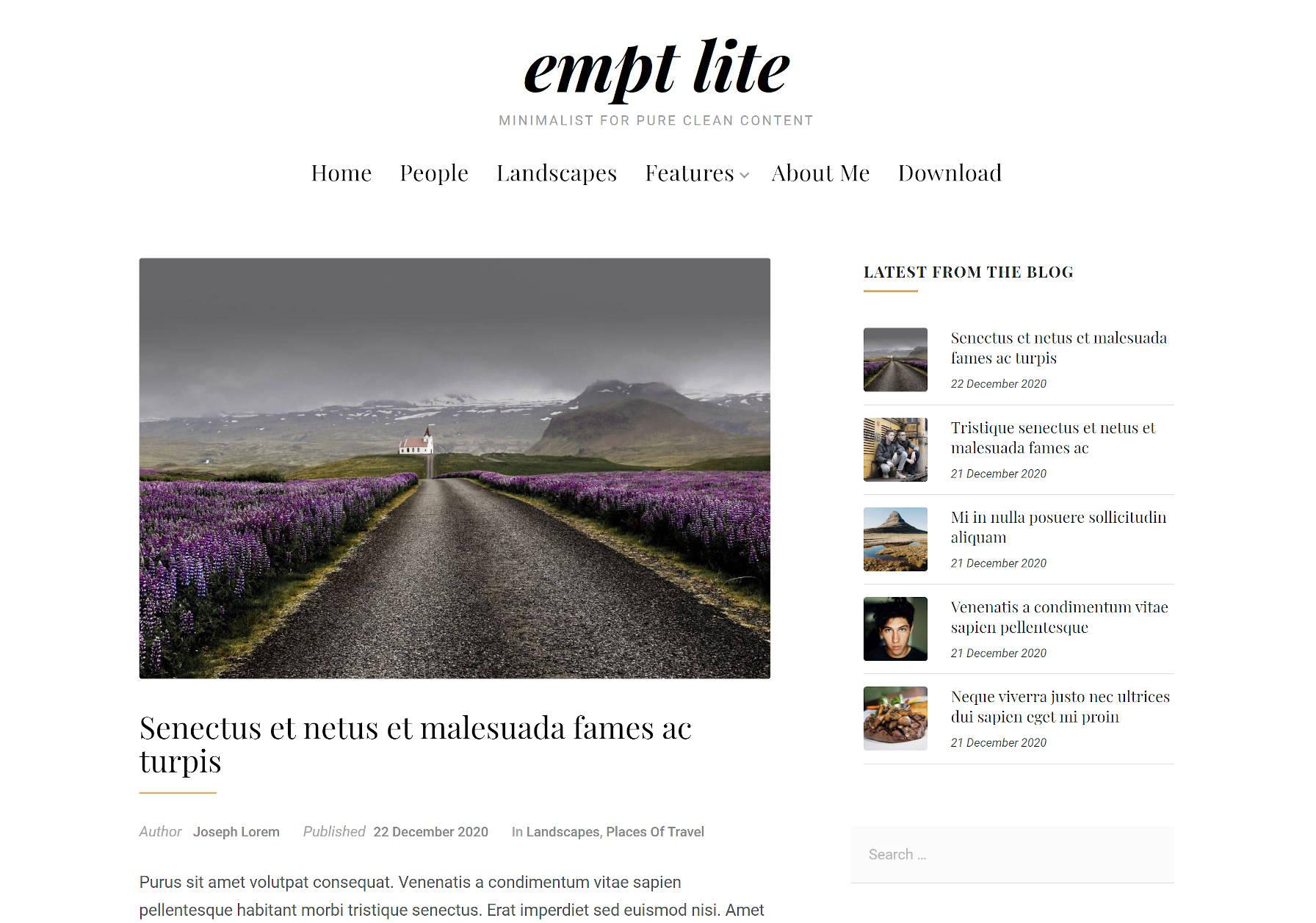 Visualização de uma única postagem no blog ao usar o tema Empt Lite WordPress.