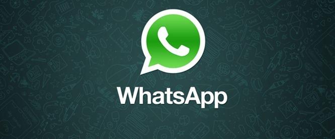 WhatsApp-windows-phone[1]