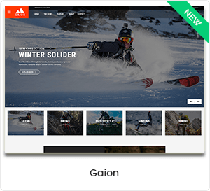 Gaion - Sports accessories store theme WordPress WooCommerce