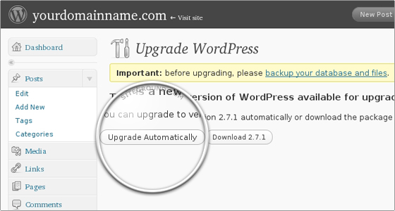 how-to-update-wordpress2