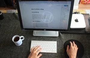 WordPress Minimum System Requirements