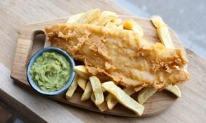 Komórkowo rozmnażane owoce morza już wkrótce na brytyjskim rynku