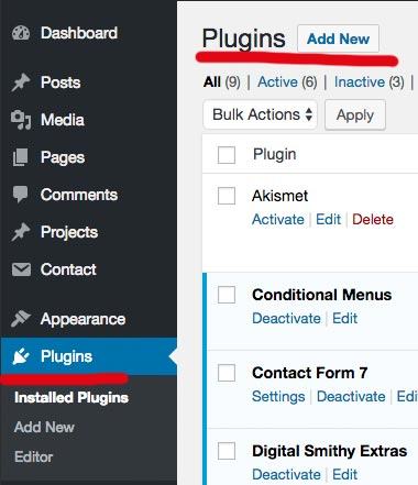 Wordpress dashboard Plugins section
