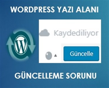 Wordpress Yazı Alanı Güncelleme sorunu
