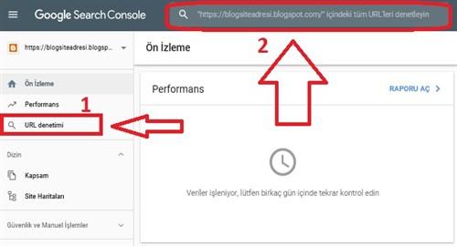 Google Yeni Search Console url denetimi