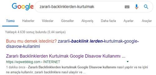 google url denetimi aracı