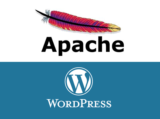 WordPress MultiSite Development in Ubuntu Localhost Part 2
