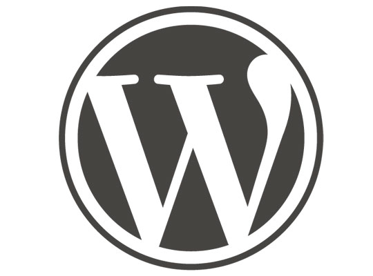6 Tips for a Safer WordPress Hosted Website