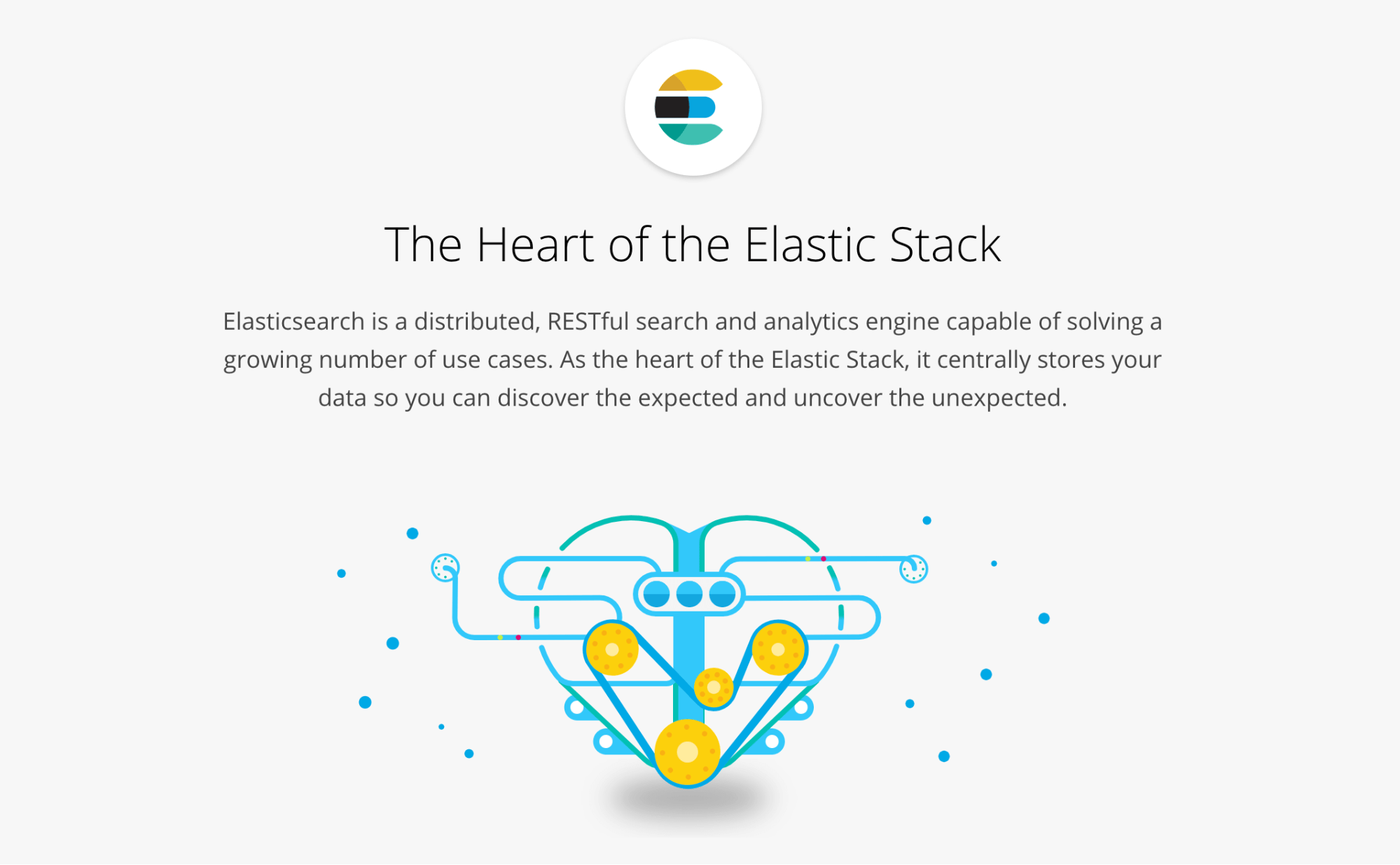 The Elasticsearch home page.