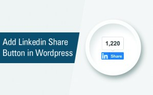 Step by step instructions to Add Official LinkedIn Share Button in WordPress