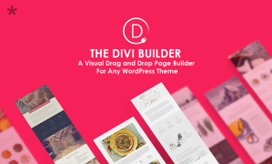 The Divi Builder Visual Drag Drop Page Builder For Any WordPress Theme