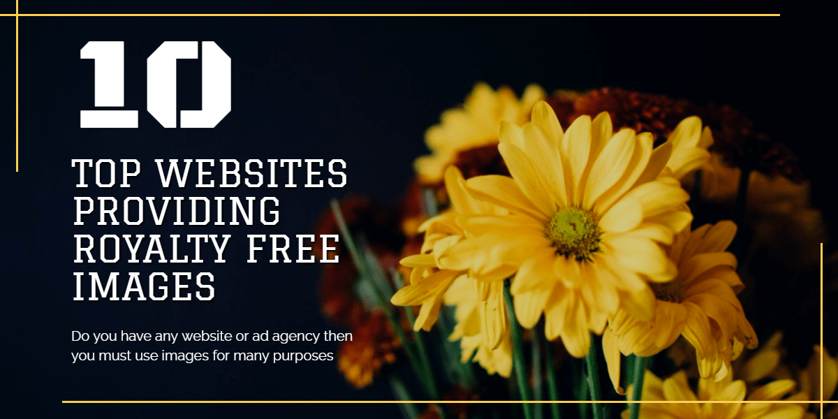 Read more about the article Top 10 Royalty Free Images to website from worldwide